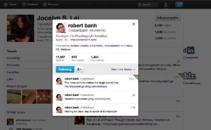 Twitter Profile Overlay